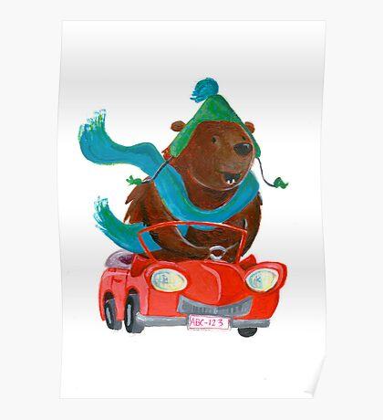 Bear in car Poster