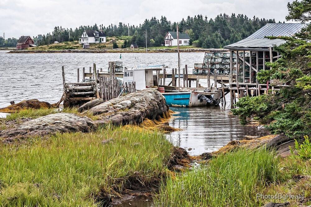 Bush Island III by PhotosByHealy