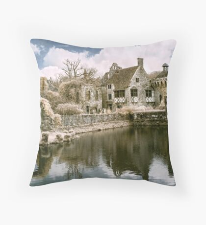 Reflections In Infrared Throw Pillow