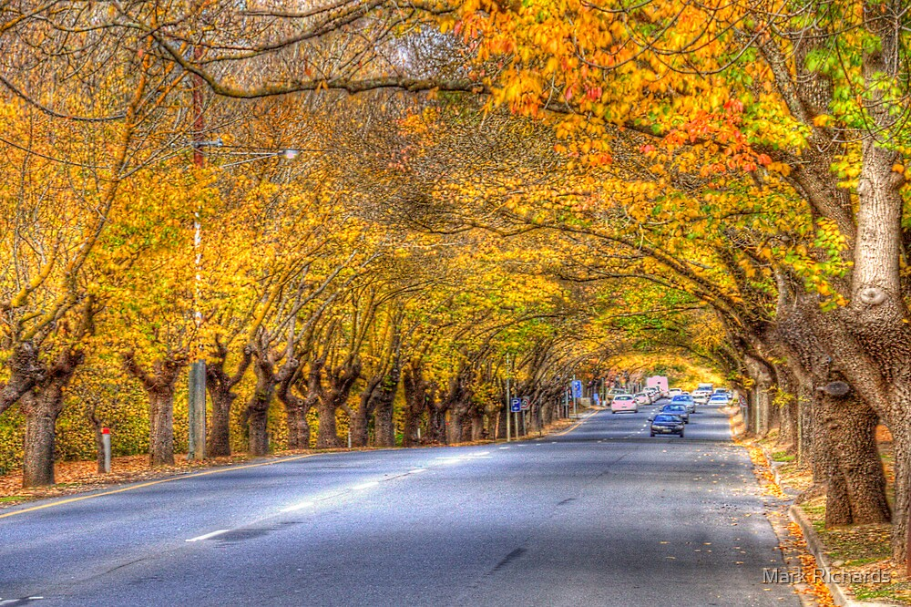Hahndorf II, Adelaide Hills SA by Mark Richards
