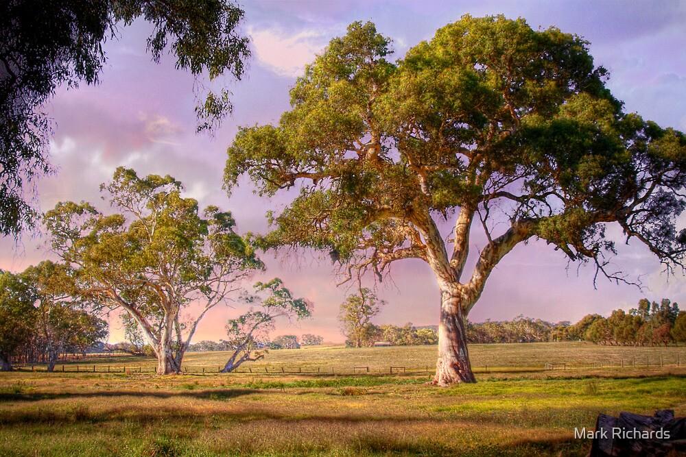 Mt Barker, Adelaide Hills SA by Mark Richards