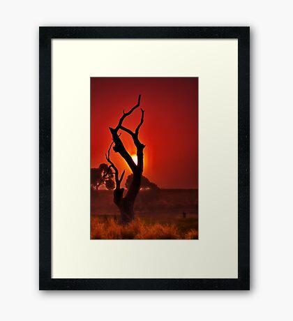 """Profile In The Mist"" Framed Print"