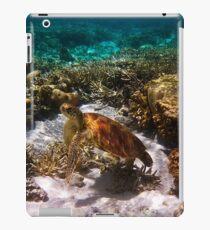 Green Turtle Ipad Case iPad Case/Skin