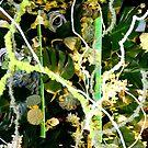 MIFGS - Green - Three by Sammy Nuttall