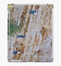 Rocking the Climb iPad Case/Skin