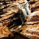 Hamersley gorge by Colin White