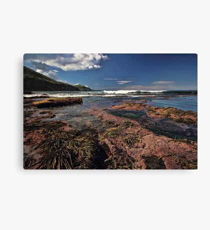 Low Tide Colours Canvas Print