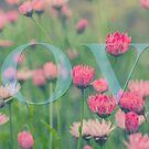 LOVE by audah