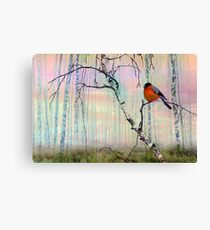 Bullfinch On Birch Canvas Print