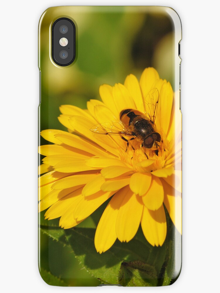 Bee iPhone Case by flashcompact