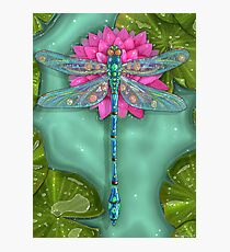 Dragonfly and Water Lily Photographic Print