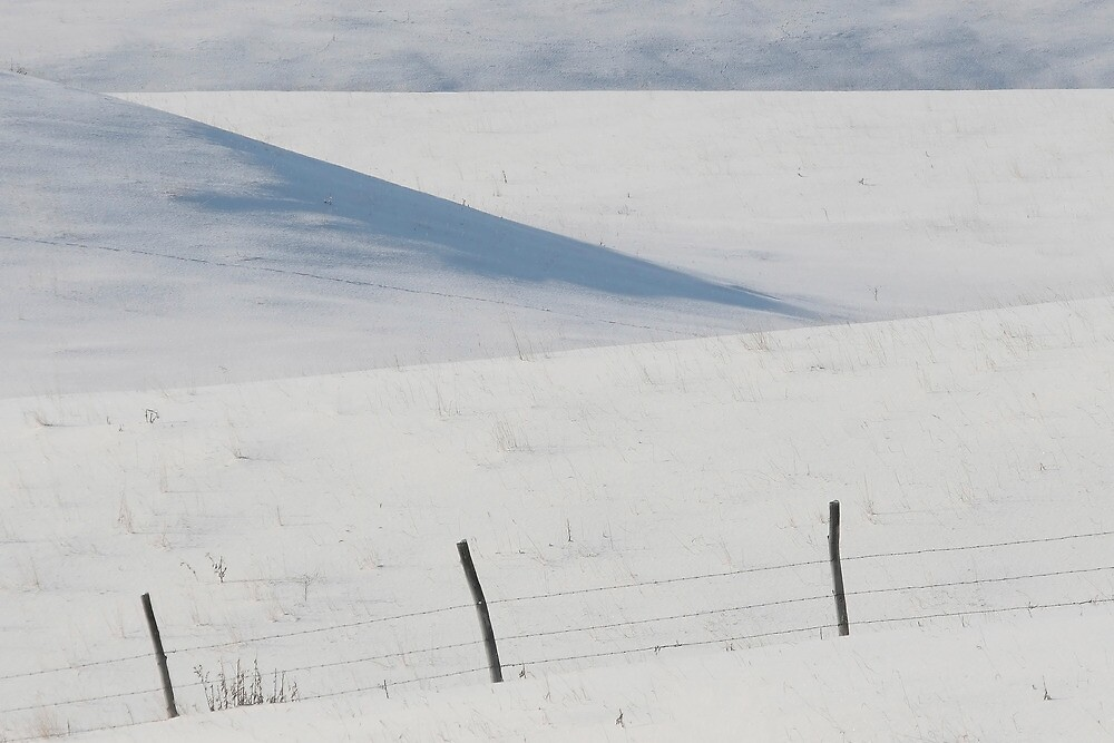 Winter day on the Prairies by pictureguy