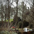 Castle through the trees by beracox