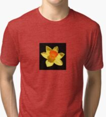Spring Daffodil Isolated On Black Tri-blend T-Shirt