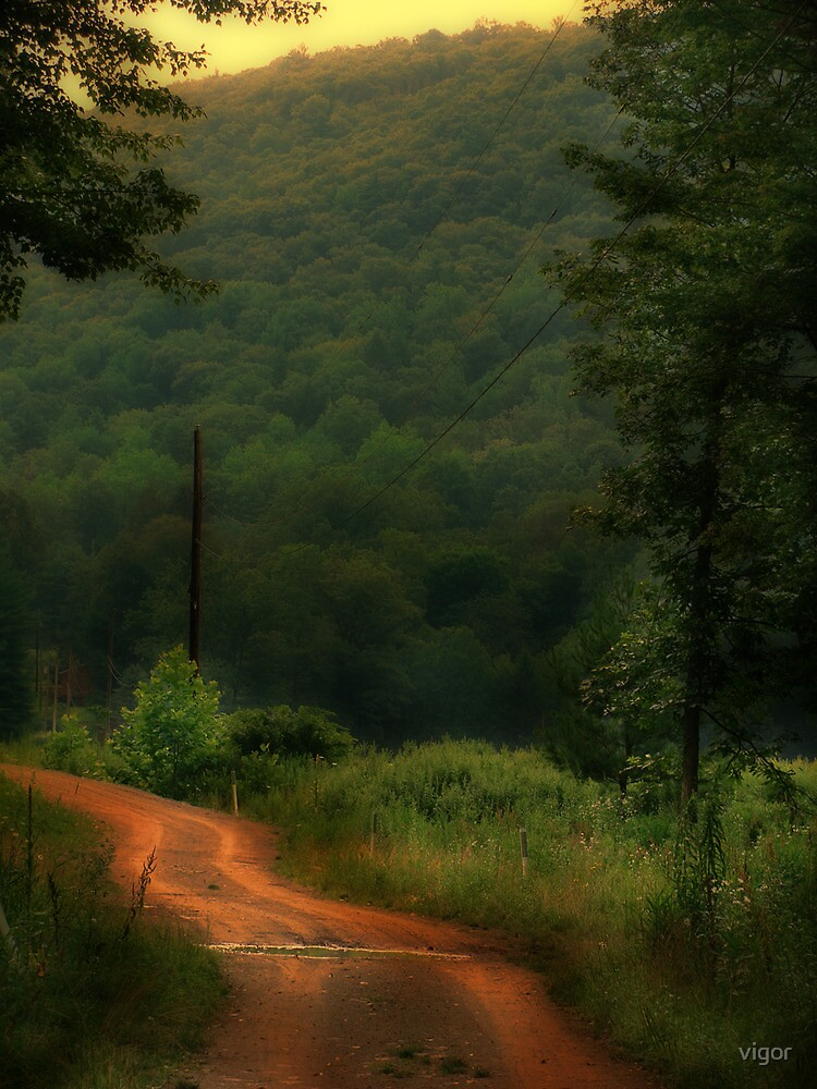 Dirt Road by vigor