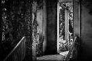 Ripponlea -The Garden  by Christine Wilson