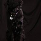 Beautiful In Black ~ by Renee Blake