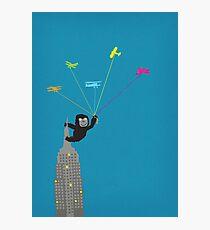 Baby Kong playtime Photographic Print