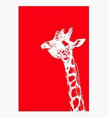 The Red Giraffe Photographic Print