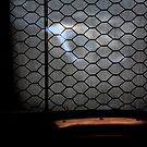 Spying .......... what is happening behind the Window..... (2) by 1morephoto