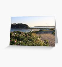 John's Cove Beach in Summer Greeting Card