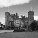 Some Castles by Martina Fagan