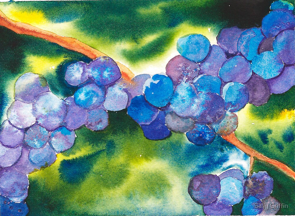 Grapes ll by Sally Griffin
