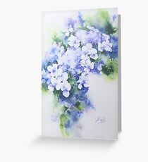 Hydrangea - 2 Greeting Card