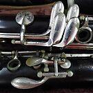 Clarinet by WildestArt