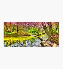 The Stepping Stones - Box Hill - Orton  Photographic Print
