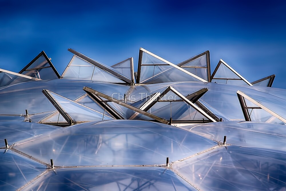Eden Project Roof by Chris Thaxter
