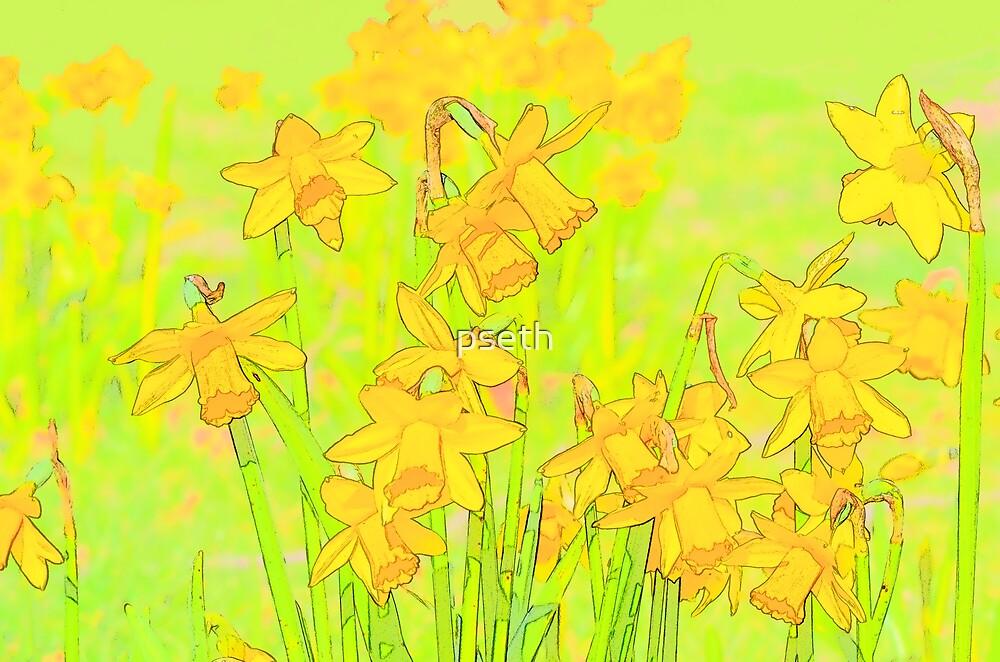 Daffodil Garden by pseth