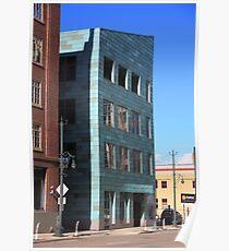 Denver Historic Building Poster