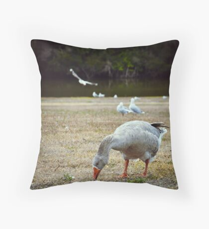 Goose & Co. Throw Pillow