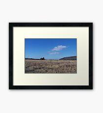 West wild Framed Print