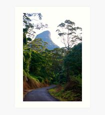The Road to Mt. Warning Art Print
