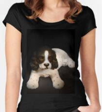 Springer Spaniel Women's Fitted Scoop T-Shirt
