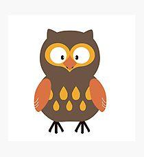 Brown Pumpkin Owl Photographic Print