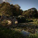 Waverley Abbey by Louise Maton