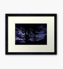 Moon Night Trees Sky Framed Print