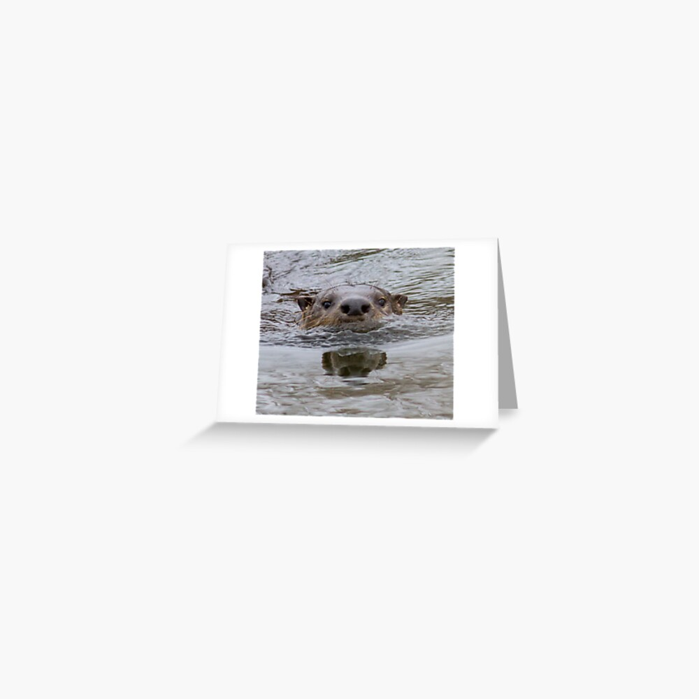 Otter nose Greeting Card