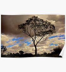 Loney Tree Poster