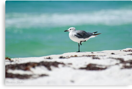 Beach Yoga - Third Pose by Barbara Shallue
