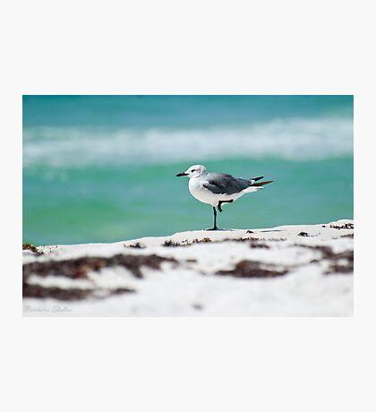 Beach Yoga - Third Pose Photographic Print