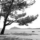 mer du Japon (B&W) view 3 by parisiansamurai