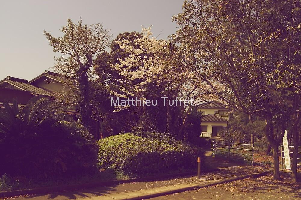 Spring by parisiansamurai