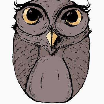 The Owl - Vector Illustration by AmpersandCo