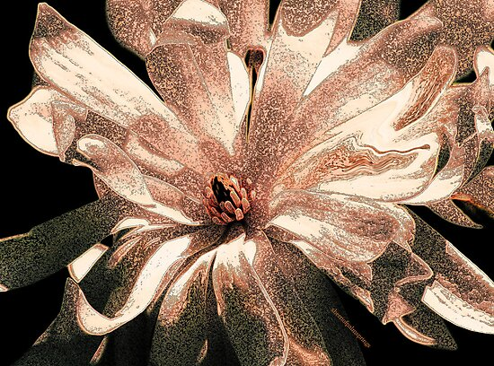 GOD'S GLORIOUS CREATION by Sherri Palm Springs  Nicholas