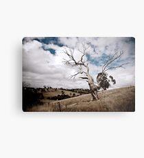 Greendale Australia Metal Print