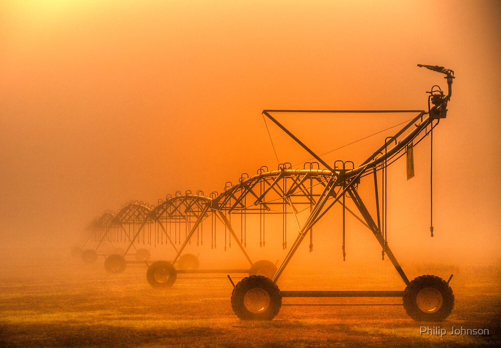 Dinosaurs in the Mist - Walwa Victoria (Colour) - The HDR Experience by Philip Johnson